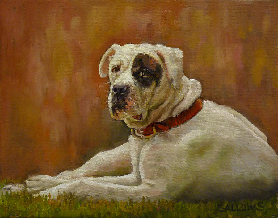 American Bulldog Painting - Munson An American Bull Dog by Nora Sallows