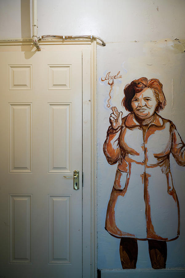 Vertical Photograph - Mural Of Mccourts Mother Angela by Panoramic Images
