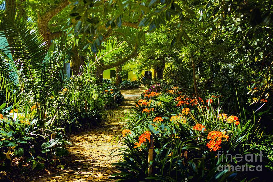 Muratie Gardens Photograph by Rick Bragan