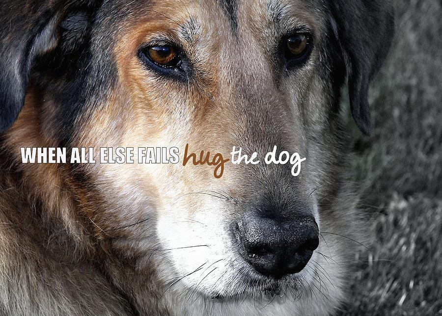 Dog Photograph - Murphy Quote by JAMART Photography