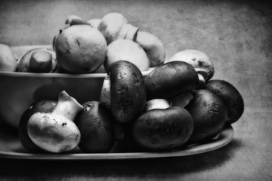 B&w Photograph - Mushroom Still Life by Tom Mc Nemar