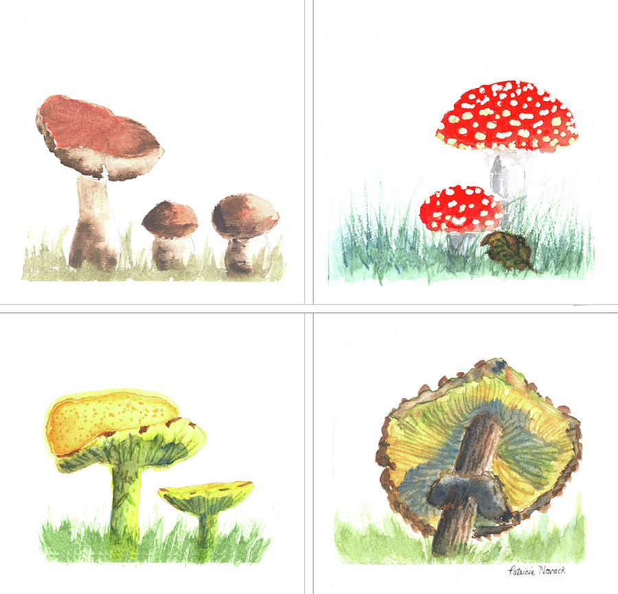 Mushroom Painting - Mushrooms On Parade Collage by Patricia Novack