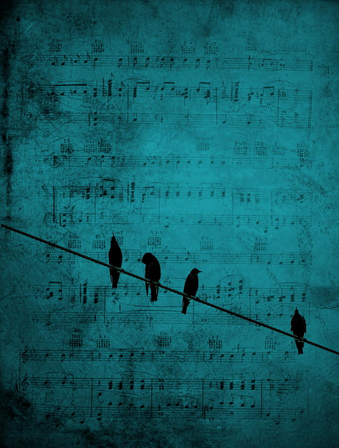 Bird Photograph - Music Soothes the Soul by Andrea Kollo