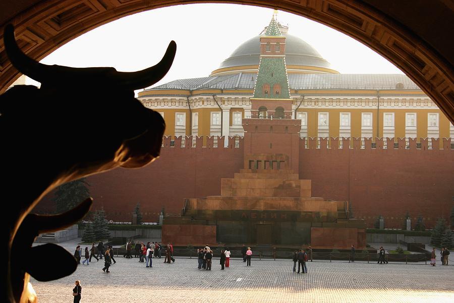 Bulls Photograph - Muscovite Bulls 2 by Juozas Mazonas