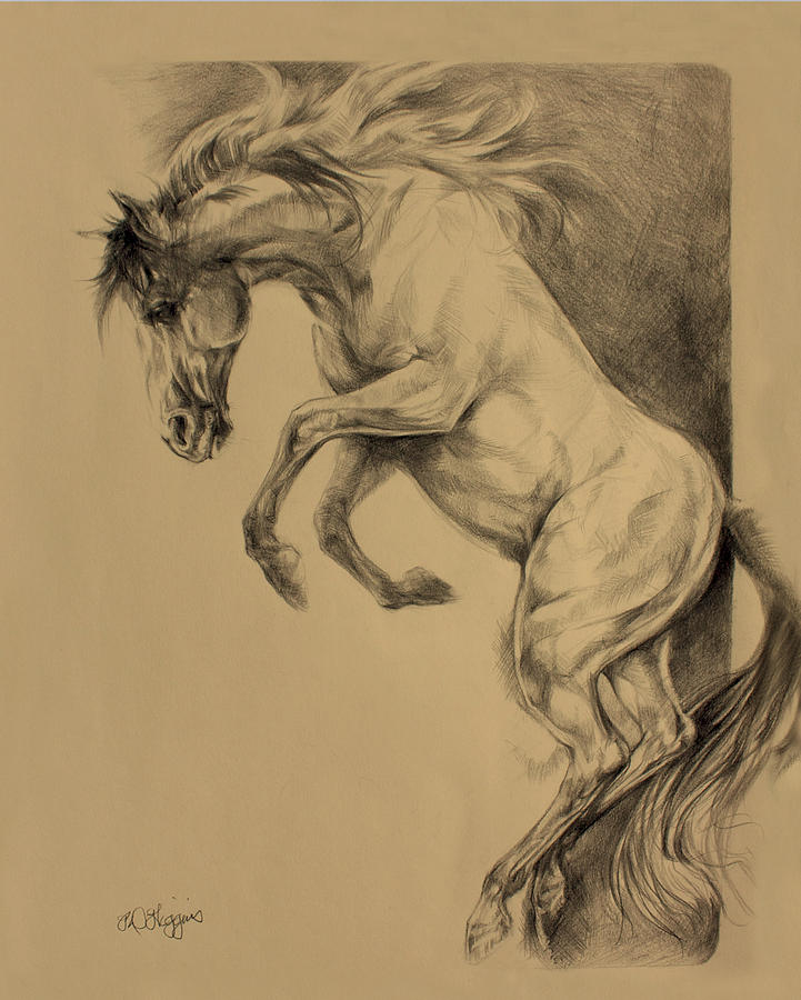 Mustang Rearing Drawing by Derrick Higgins