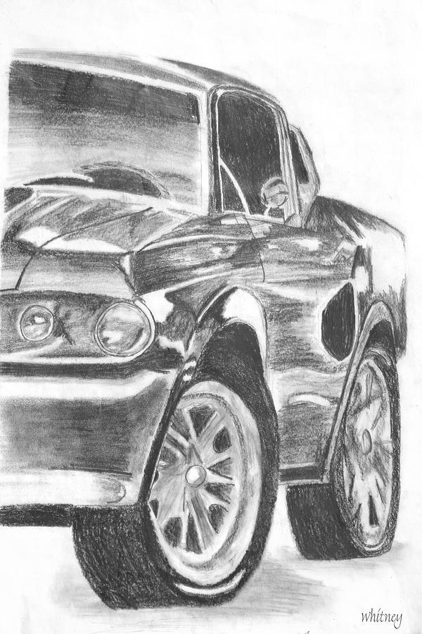 Arts Drawing - Mustang by Whitney Nanamkin