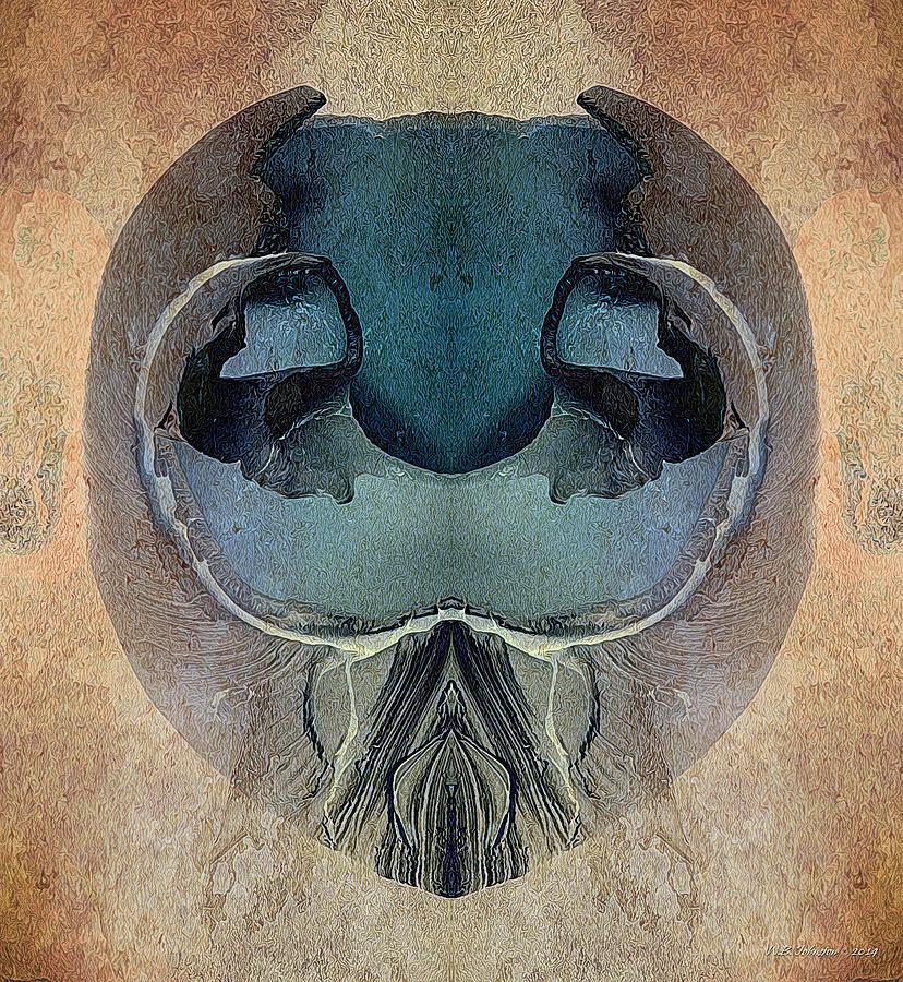 Shell Photograph - Mutation by WB Johnston