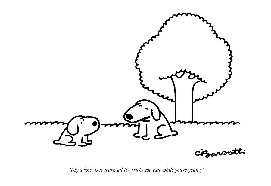 My Advice Is To Learn All The Tricks Drawing by Charles Barsotti