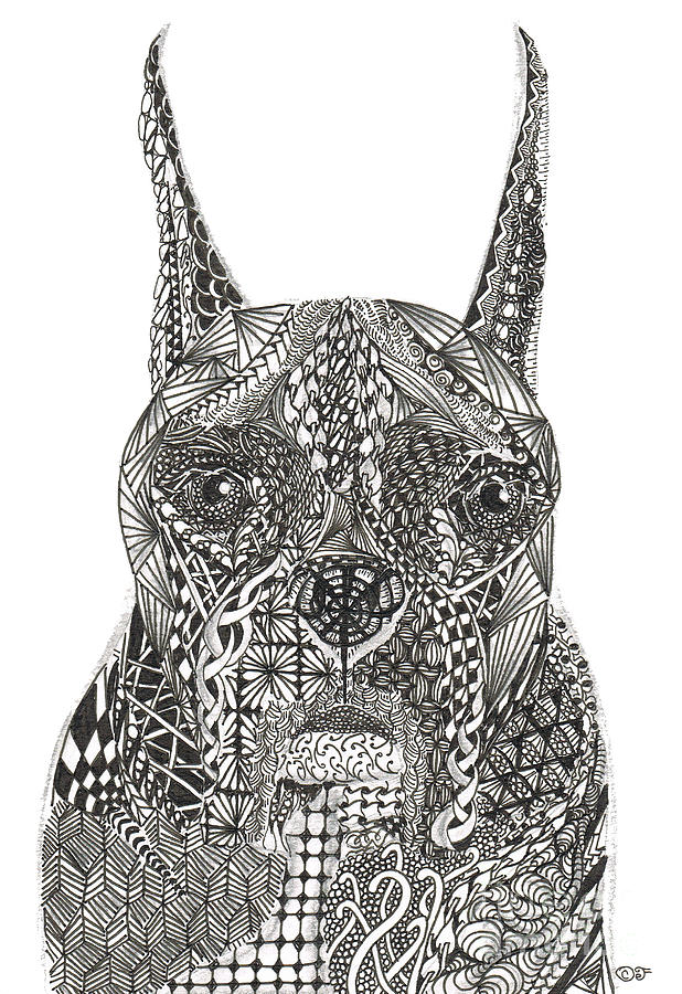 Beautiful Zentangle Inspired Boxer Dog Drawing - My Buddy - Boxer by Dianne Ferrer