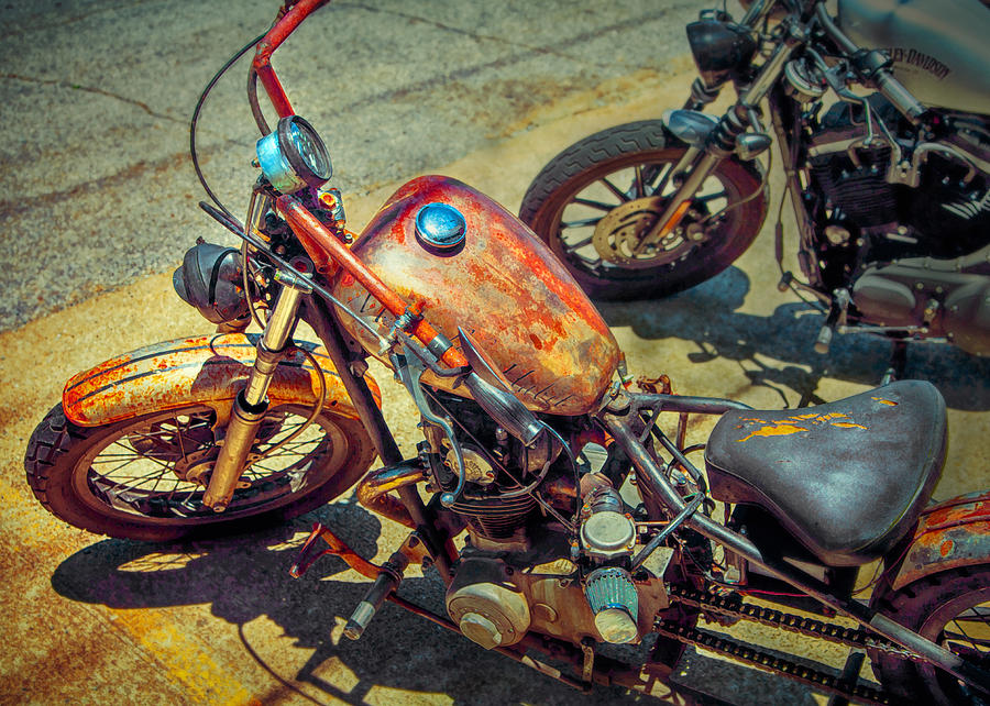 Motorcycle Photograph - My Dirty Habit by William Schmid
