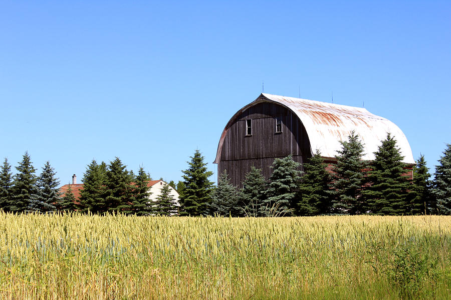 Barn Photograph - My Favorite Barn by Sheryl Burns
