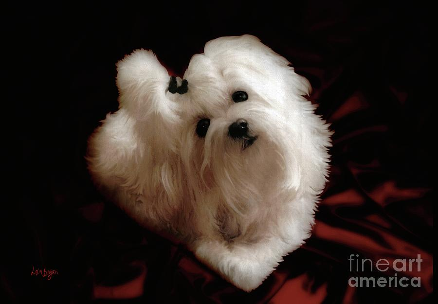 Dog Photograph - My Heart My Muse by Lois Bryan