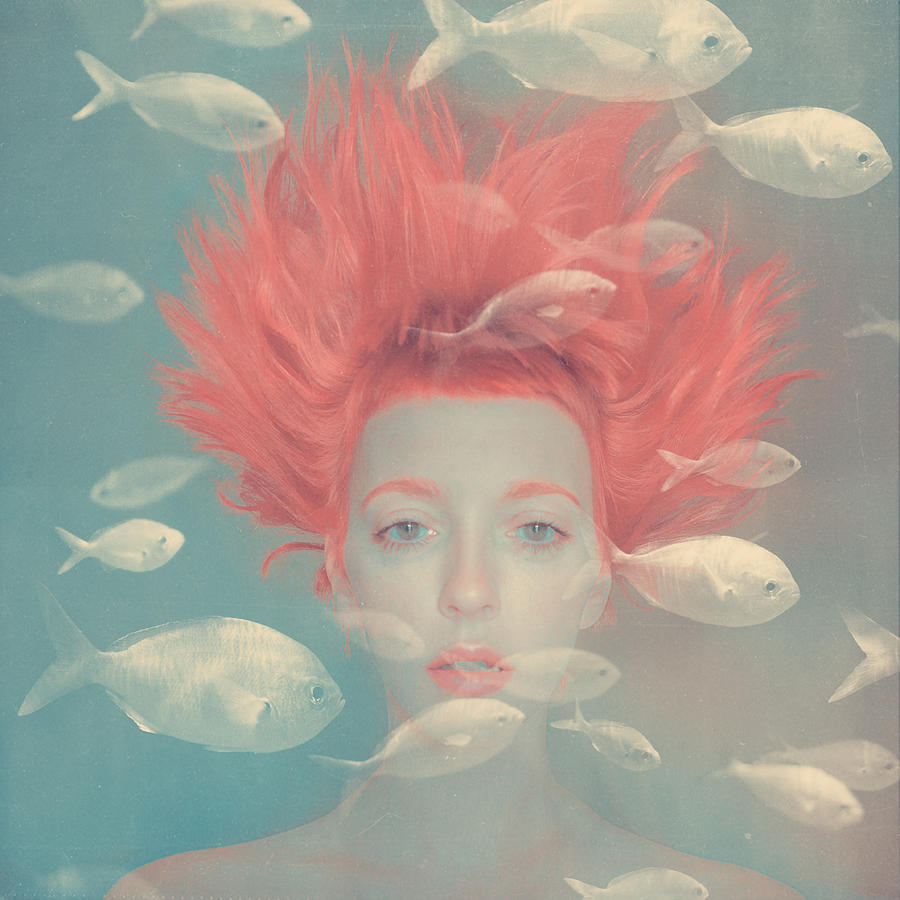 Dream Photograph - My imaginary fishes by Anka Zhuravleva