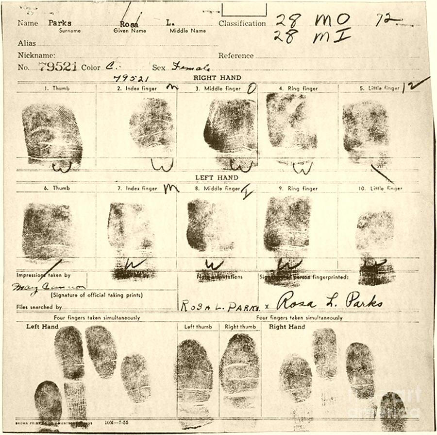 Rosa Parks Prints Digital Art - My Little Finger by Craig Pearson