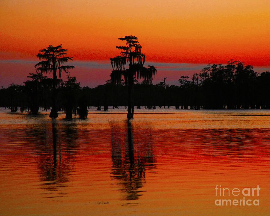 Landscape Photograph - My Louisiana Heart by Luana K Perez