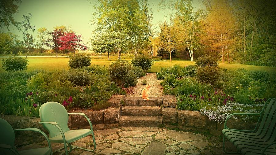 Mother's Garden Photograph - My Mothers Garden by Dawn Vagts