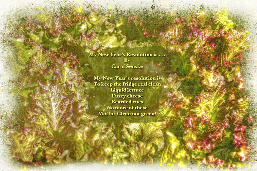 Poem Photograph - My New Years Resolution Is . . . Poem And Image by Mother Nature