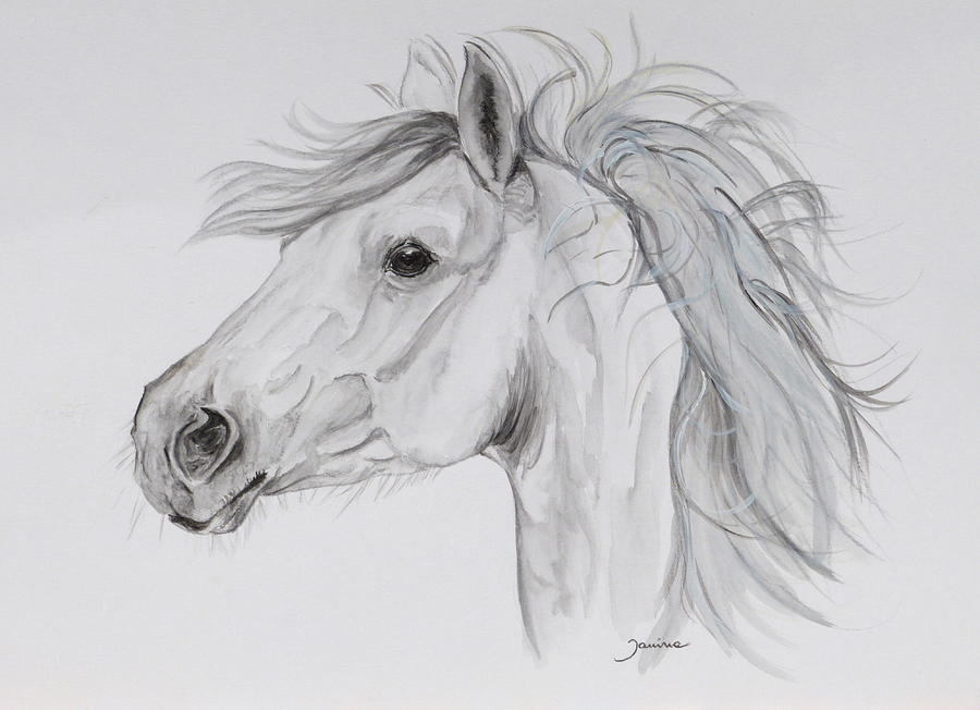 Equine Canvas Prints Painting - My Pony by Janina  Suuronen