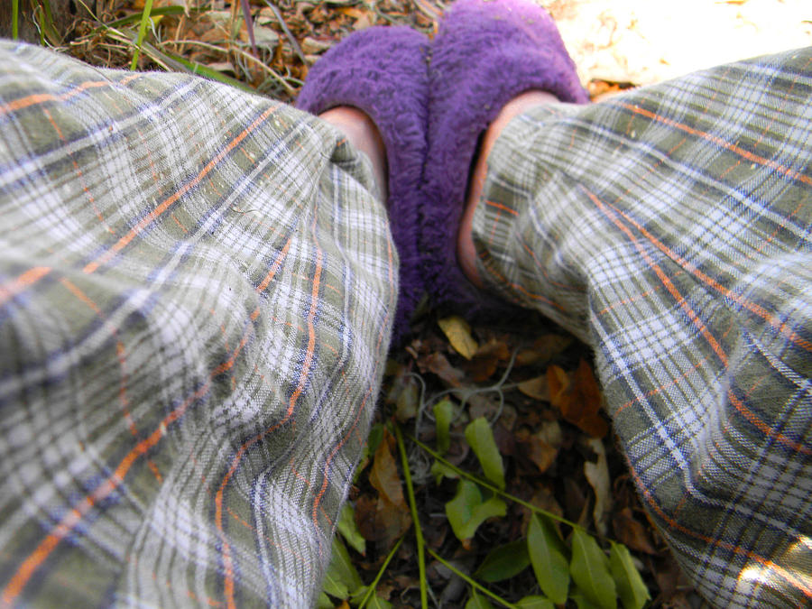 Slippers Photograph - My Purple Slippers by Christy Usilton