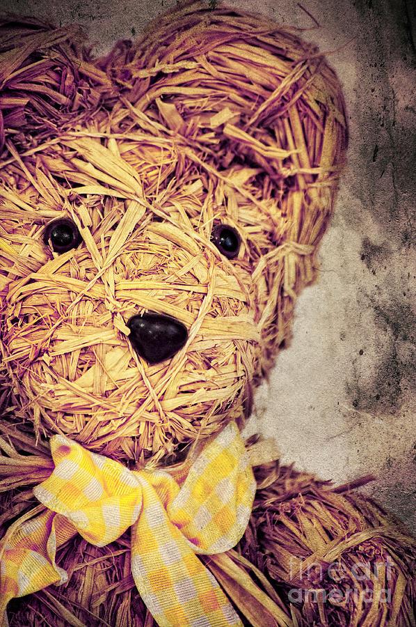 Teddy Photograph - My Teddy Bear by Angela Doelling AD DESIGN Photo and PhotoArt