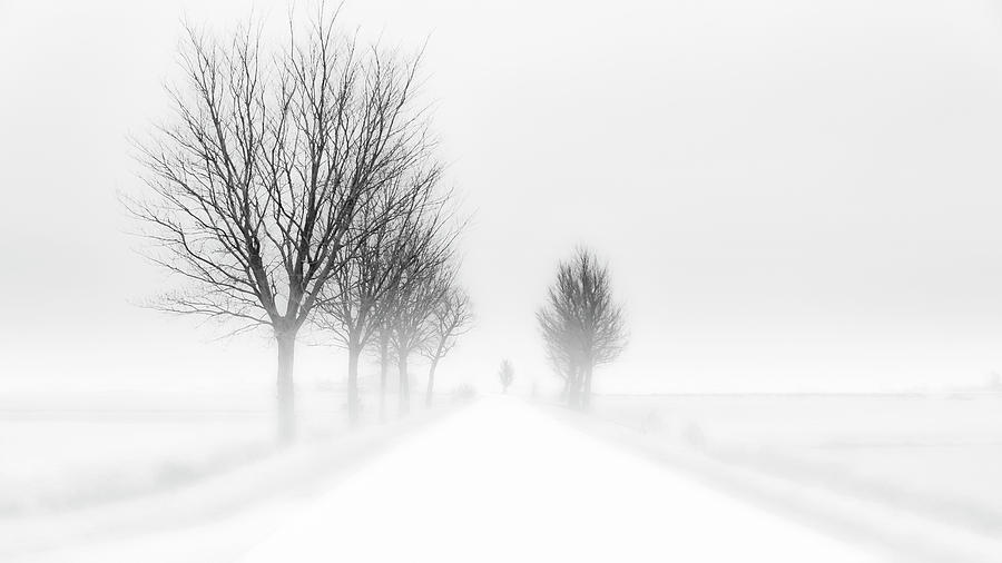 High Key Photograph - My Tiny World by Jacob Tuinenga