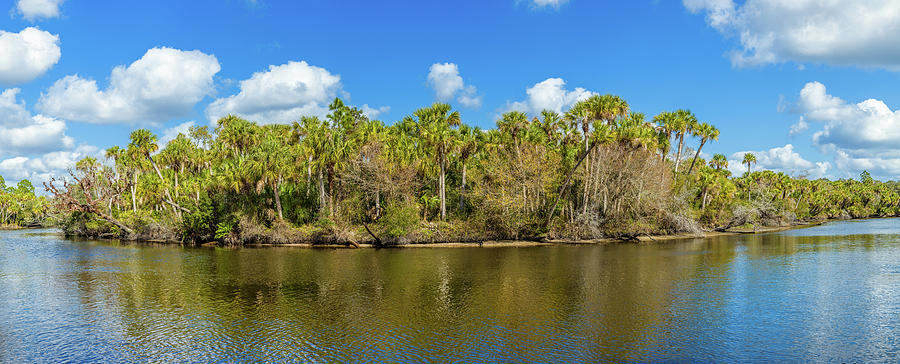 Horizontal Photograph - Myakka River From Jelks Preserve by Panoramic Images
