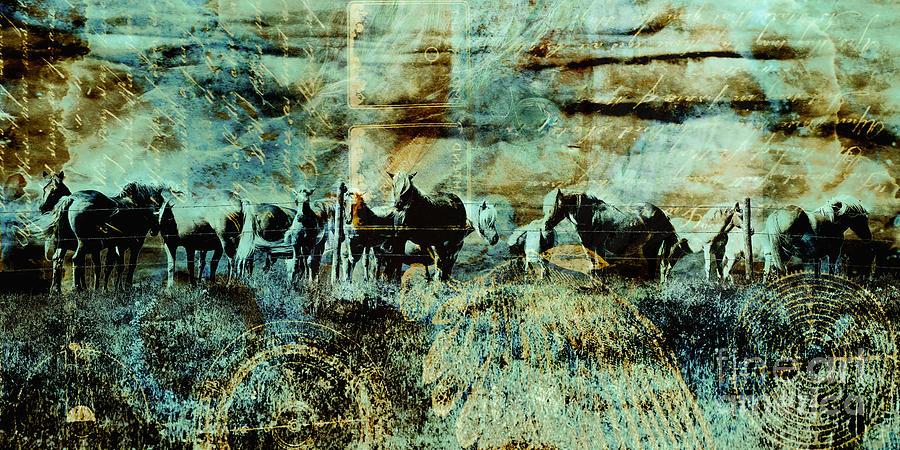 Horses Digital Art - Mystery Herd by Judy Wood