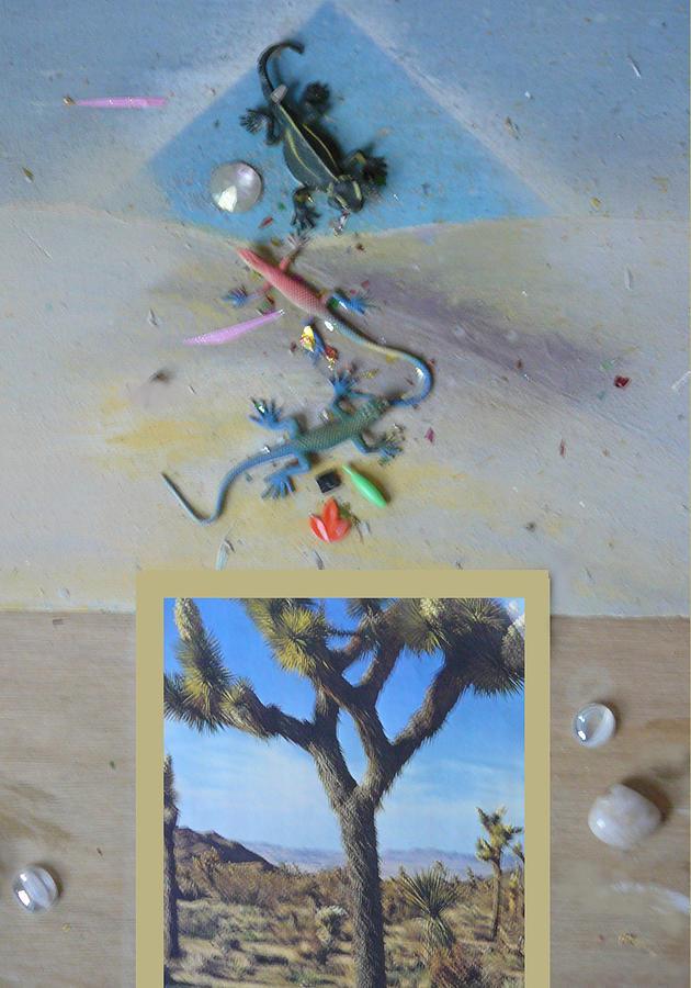 Desert Photograph - Mystical Desert  A by Mary Ann  Leitch