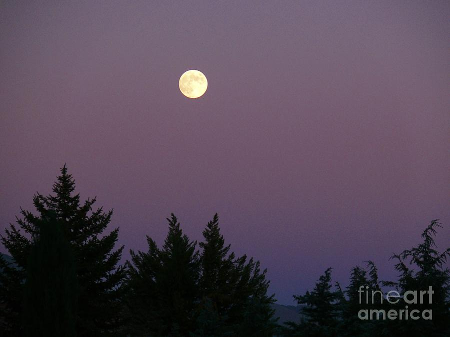 Full Moon Photo Photograph - Mystical Moon by Jacquelyn Roberts