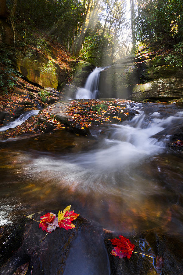Appalachia Photograph - Mystical Pool by Debra and Dave Vanderlaan