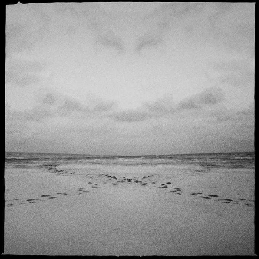 Siesta Key Photograph - Mystical Siesta IIi by Alison Maddex