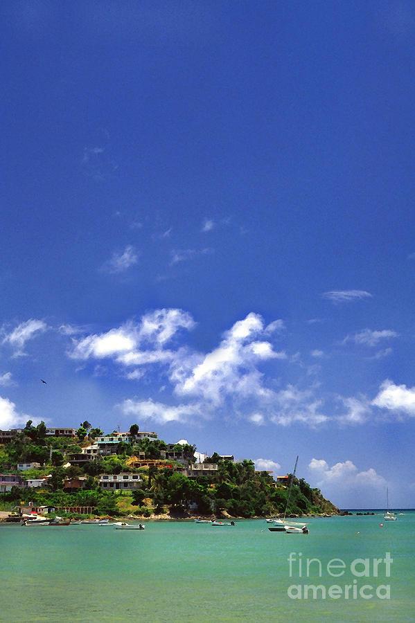 Puerto Rico Photograph - Naguabo Shoreline by Thomas R Fletcher