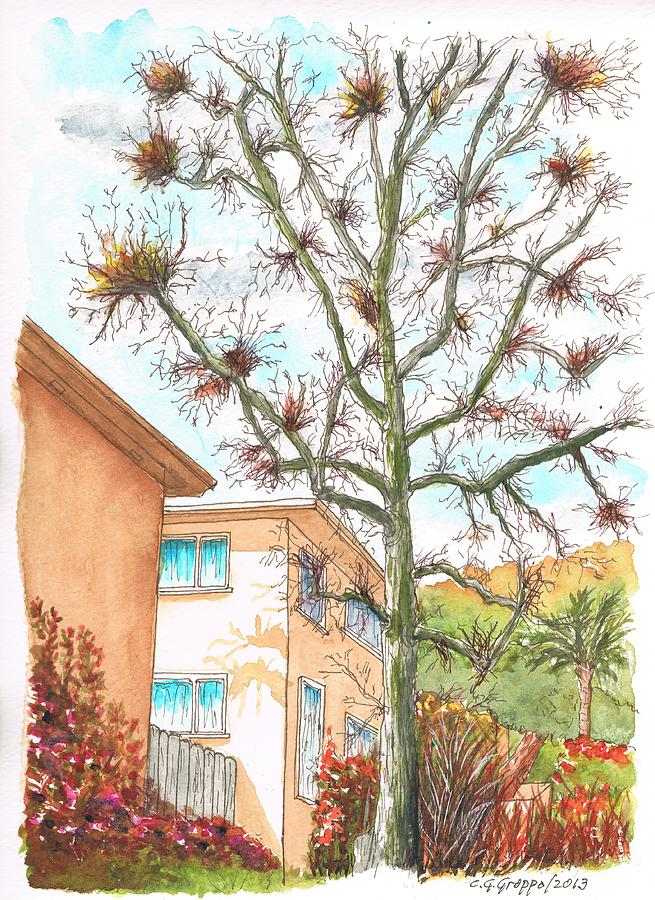 West Hollywood Painting - Naked Tree In Laurel And Selma Avenue, West Hollywood, California by Carlos G Groppa