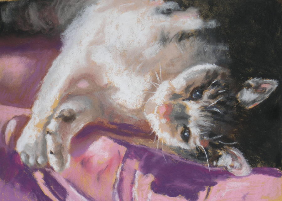 Cat Pastel - Nap Time For Kitty by Janice Harris