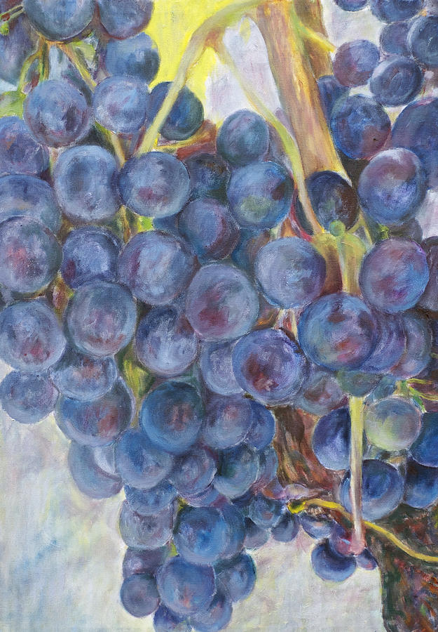 Grapes Painting - Napa Grapes 1 by Nick Vogel