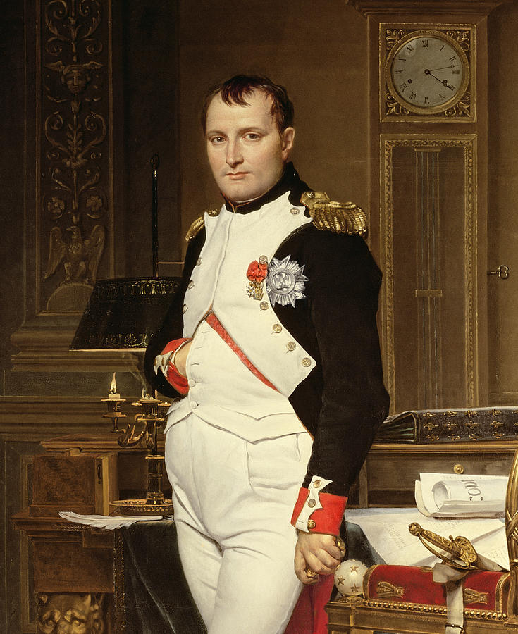 "a life and career of napoleon bonaparte ""more books have been written with napoleon in the title than there have been days since his death in 1821"" napoleon : a life by andrew roberts (2014) andrew roberts's napoleon is the first one-volume biography to take advantage of the recent publication of napoleon's thirty-three thousand."