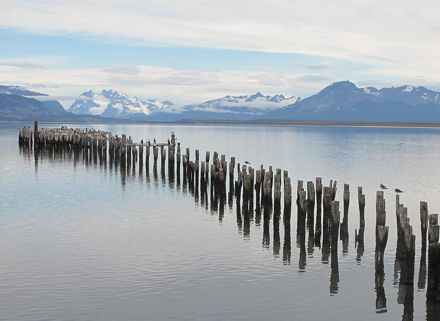 South America Photograph - Natales by David  Hawkins