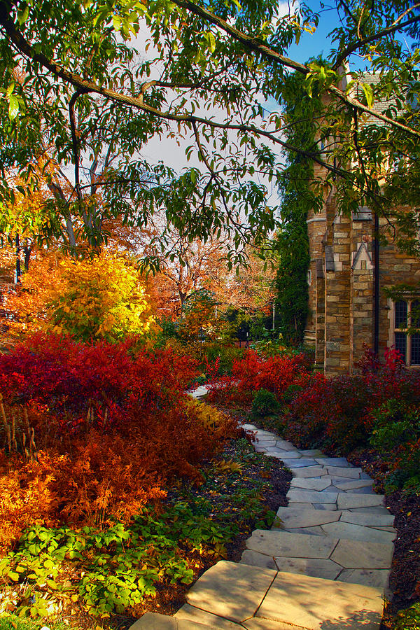 National Cathedral Photograph - National Cathedral Path by Mitch Cat