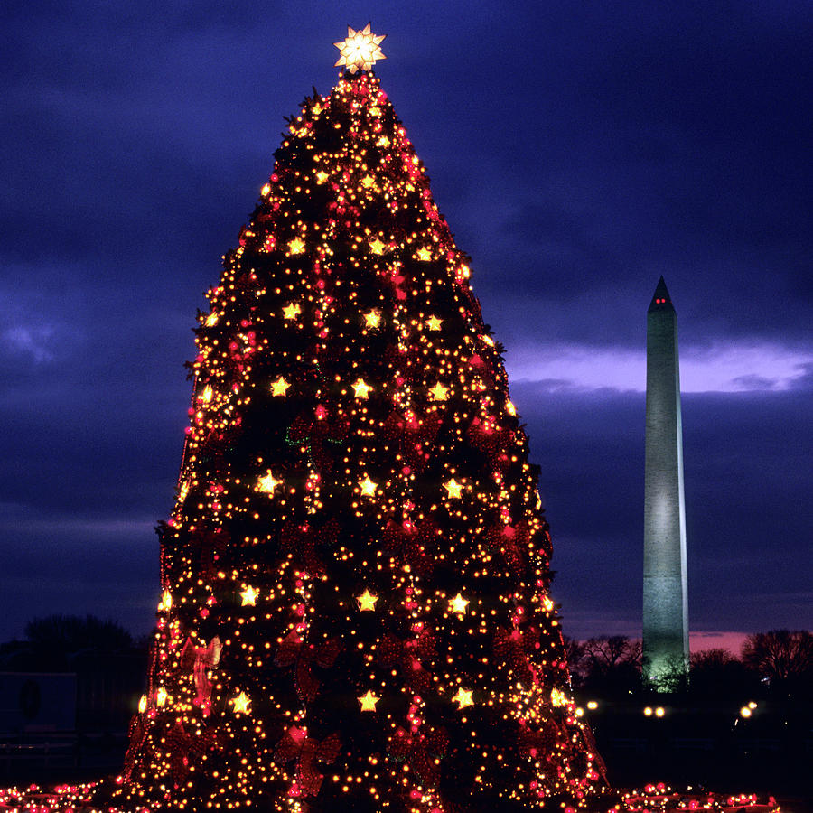 National Christmas Tree By The White Photograph by Hisham Ibrahim