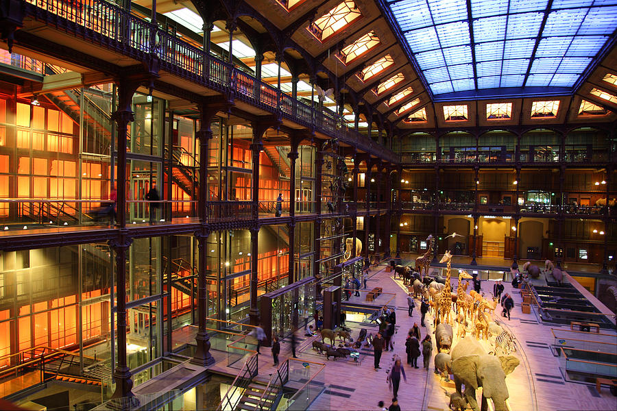 Natural History Museum Paris France
