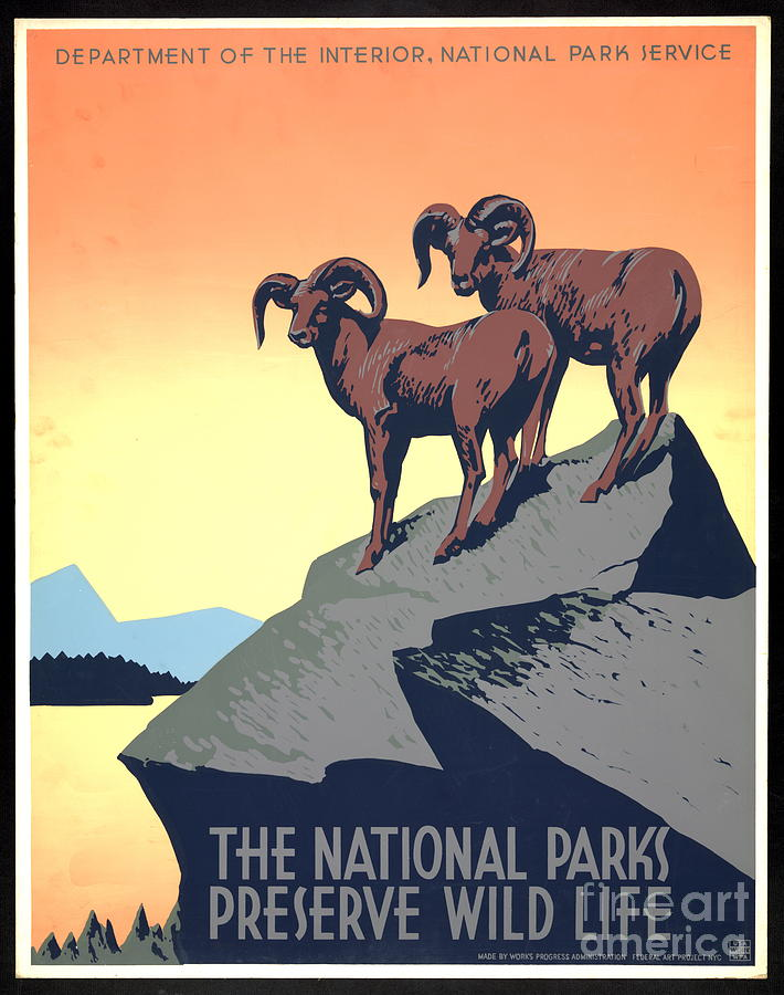 National Parks Poster 1939 Photograph - National Parks Poster 1939 by Padre Art