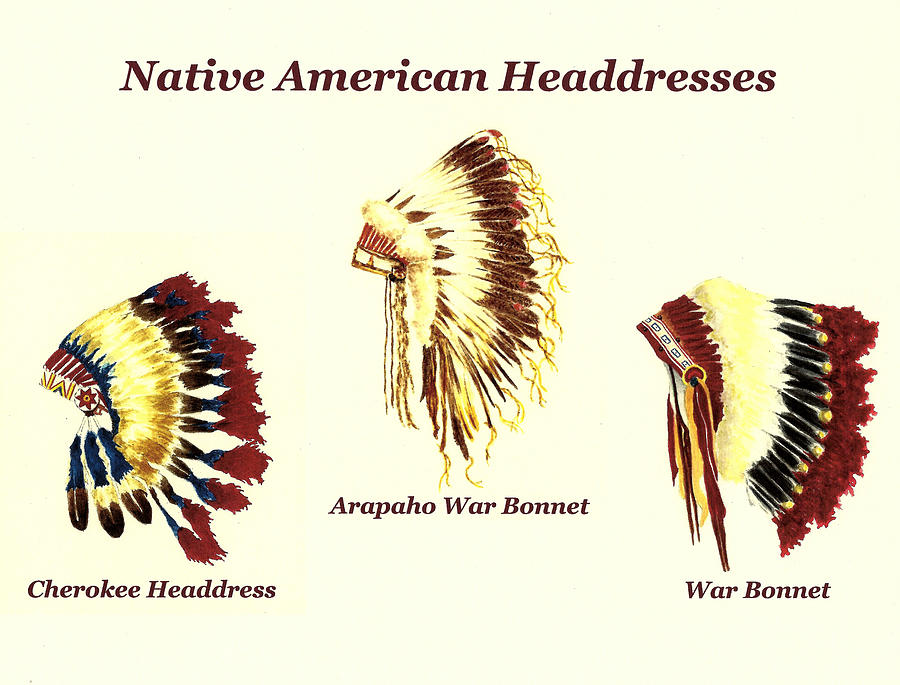 Native American Headdresses Number 2 by Michael Vigliotti