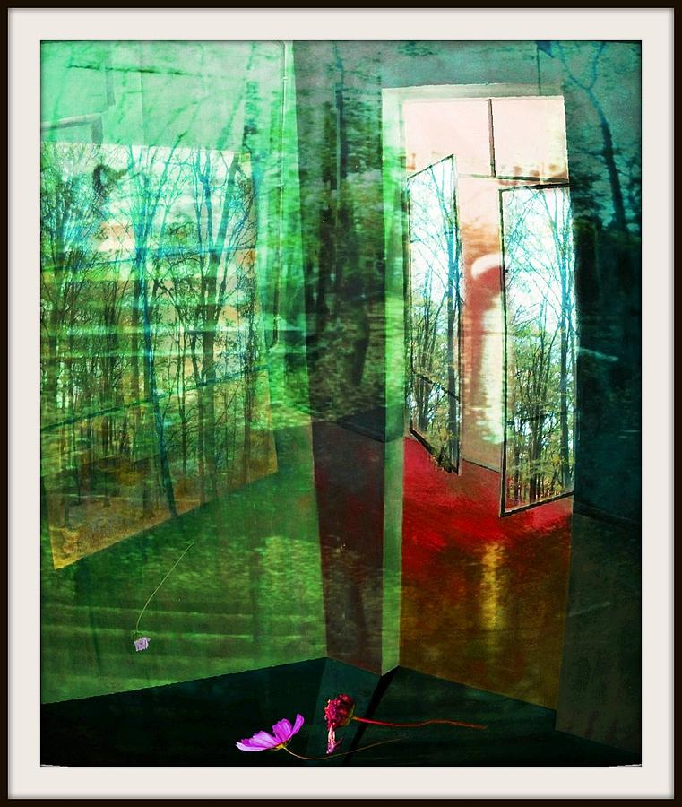 Oelbild Mixed Media - Natur-raum 02 by Gertrude Scheffler