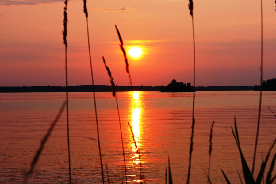Sunset Photograph - Natural Beauty by Pat Purdy