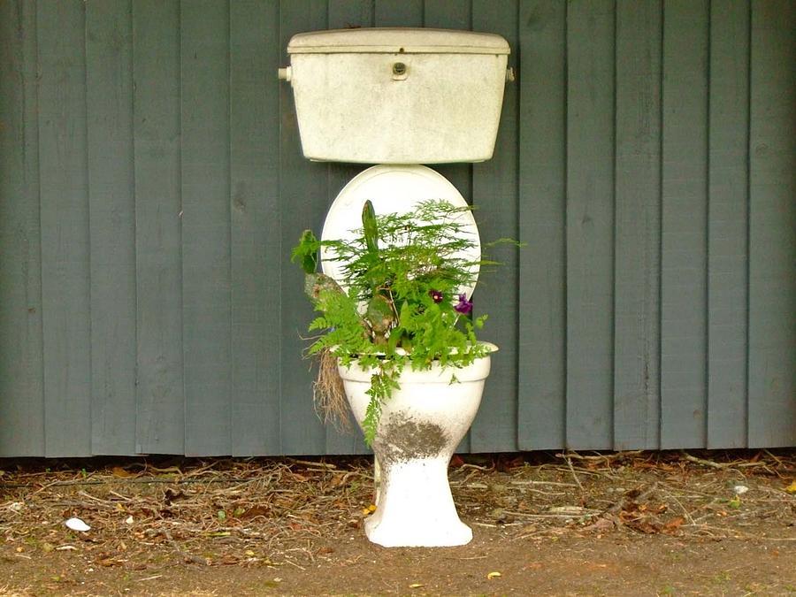 Toilet Photograph - Natural Fertilezer by Renato Sensibile