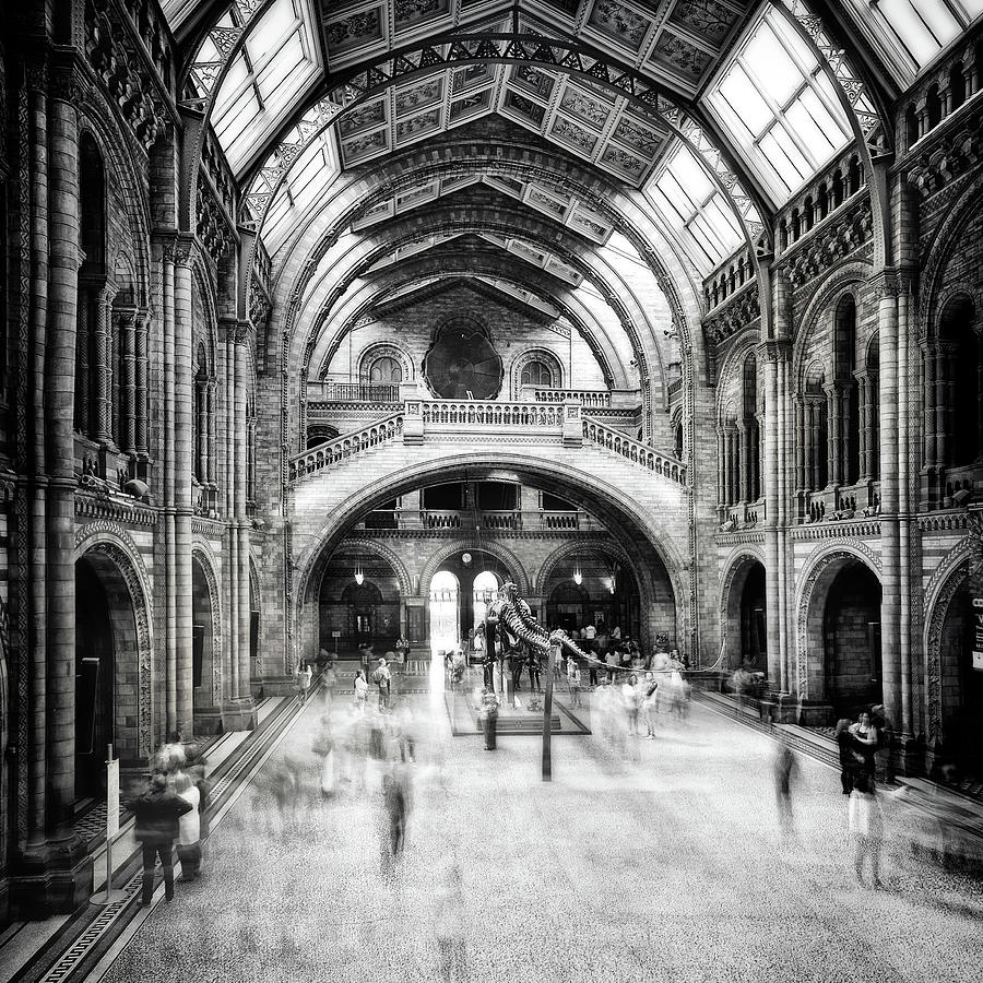 Museum Photograph - Natural History Museum Of London by Santiago Pascual Buye