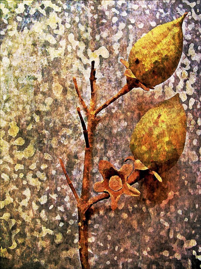 Nature Digital Art - Nature Abstract 21 by Maria Huntley