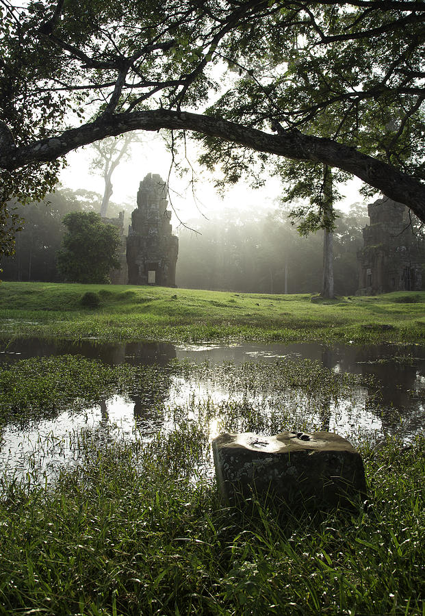 Nature Cambodia Siem Reap 02 by Sentio Photography