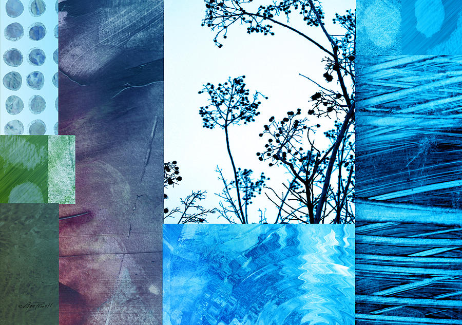 nature collage with blue photograph by ann powell