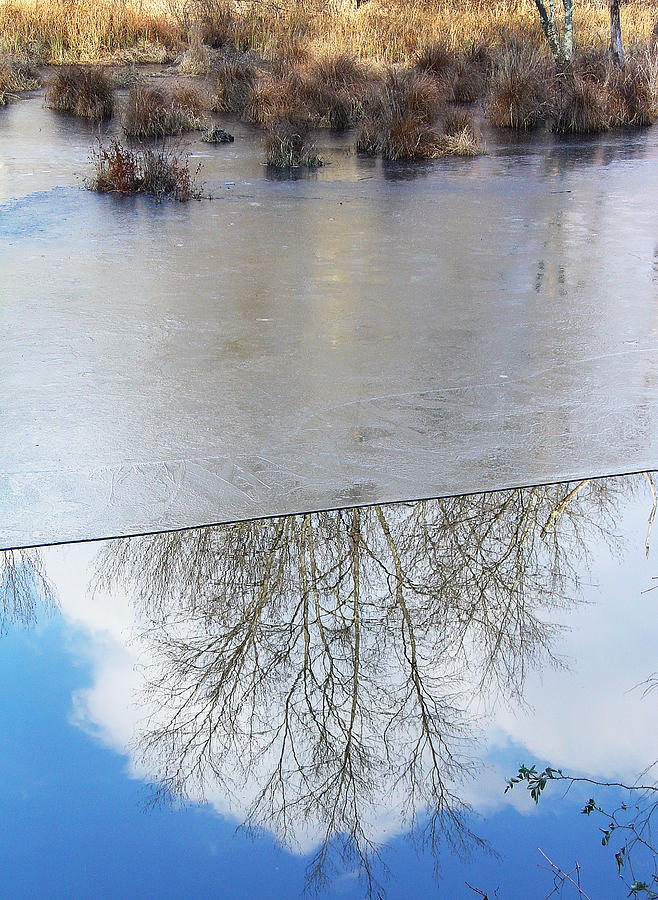 Reflection Photograph - Nature Draws Its Line With Its Ice by Terrance DePietro